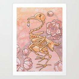 Curio Art Print
