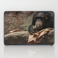 newspaper iPad Cases featuring bored chimpanzee after reading newspaper by UtArt