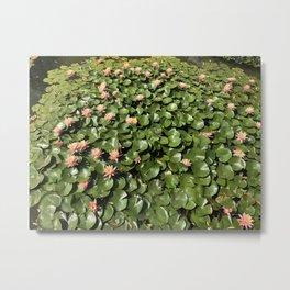 sea of leaves (title by Meg) Metal Print