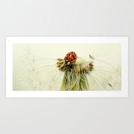 Dandelion Ladybugs Art Print