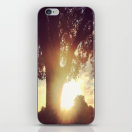 Sunset at the park iPhone Skin