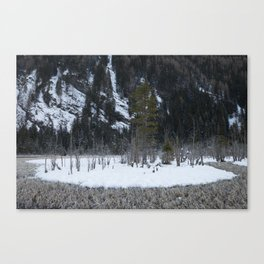 Snow Tales #3 Canvas Print