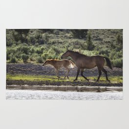 A Bay and Her Colt Running By The Waterhole Rug