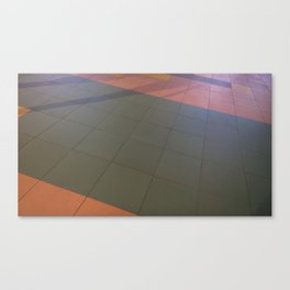 El suelo que pisamos Canvas Print