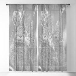 Bunnies Sheer Curtain