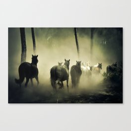 Herd of Horses Running Down a Dusty Path Canvas Print