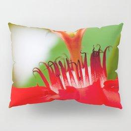 Macro Photography : Red Passiflora Flower Curls Pillow Sham