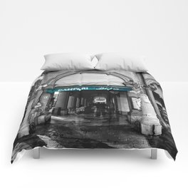 Black and White Bologna Street Photography Vector Green Comforters