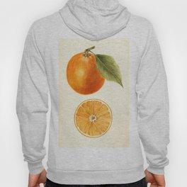Vintage Painting of an Orange Hoody