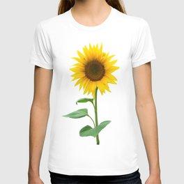 Single sunflower T-shirt
