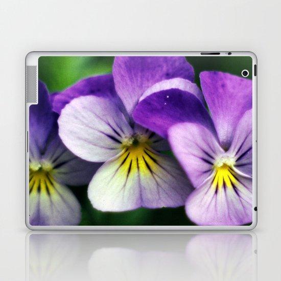 Pansies Laptop & iPad Skin