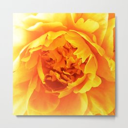FLOWER SUNSHINE Metal Print