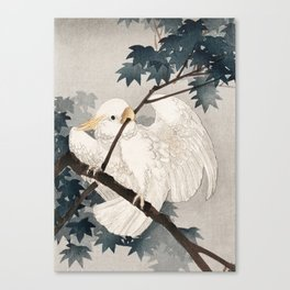 Cockatoo on a tree - Japanese vintage woodblock print Canvas Print