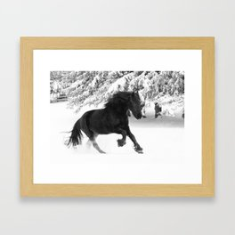 Friesian Mare Galloping in a Snowstorm Framed Art Print