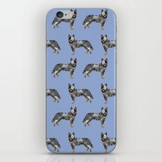 Australian Cattle dog must have gifts for cattle dog owners dog breed pet friendly unique dog art iPhone & iPod Skin