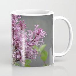 Lilac Blooms Coffee Mug