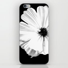 Springtime Aneomone In Black And White iPhone Skin