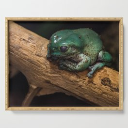 Froggy Serving Tray