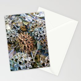 Spikey Balls Stationery Cards