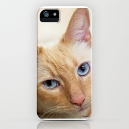Beautiful Bebe iPhone Case