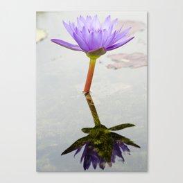 Blue Lotus Reflection Canvas Print
