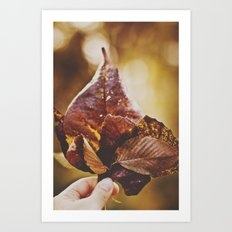 Fall Bouquet Art Print