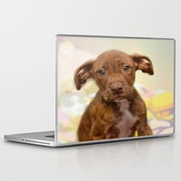 pit bull Laptop & iPad Skins featuring Pit Bull  Mix Cutie Puppy for Adoption  by Peggy Volunteer Photographer  FOR RESCUE