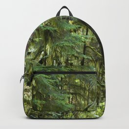 Cathedral Grove Old Growth Forest Backpack