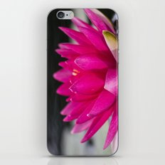 Flower Series 5 iPhone & iPod Skin