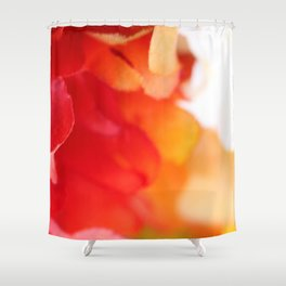 Colorful Silk Shower Curtain