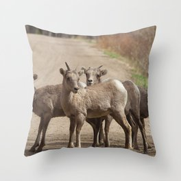 Which Way! Throw Pillow