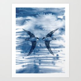 Swift Pair Art Print