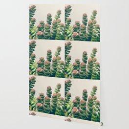 Pretty Little Succulents Wallpaper