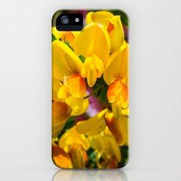 Scotch Broom iPhone Case
