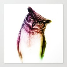 The wise Mr. Owl Canvas Print
