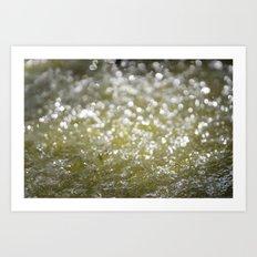 Sparkling Water Art Print