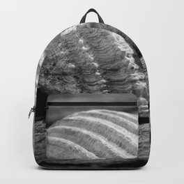 Half a sea shell on wood Backpack