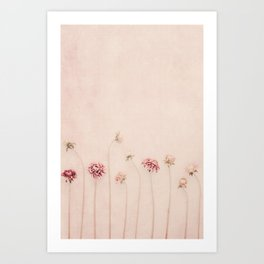 Cameo pink Art Print