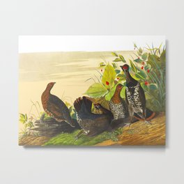 Spotted Grouse Bird Metal Print