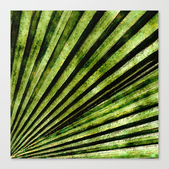 Green Palm Tree Frond Canvas Print