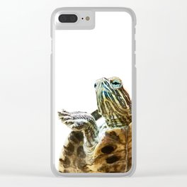 Small red-eared turtle in aquarium Clear iPhone Case