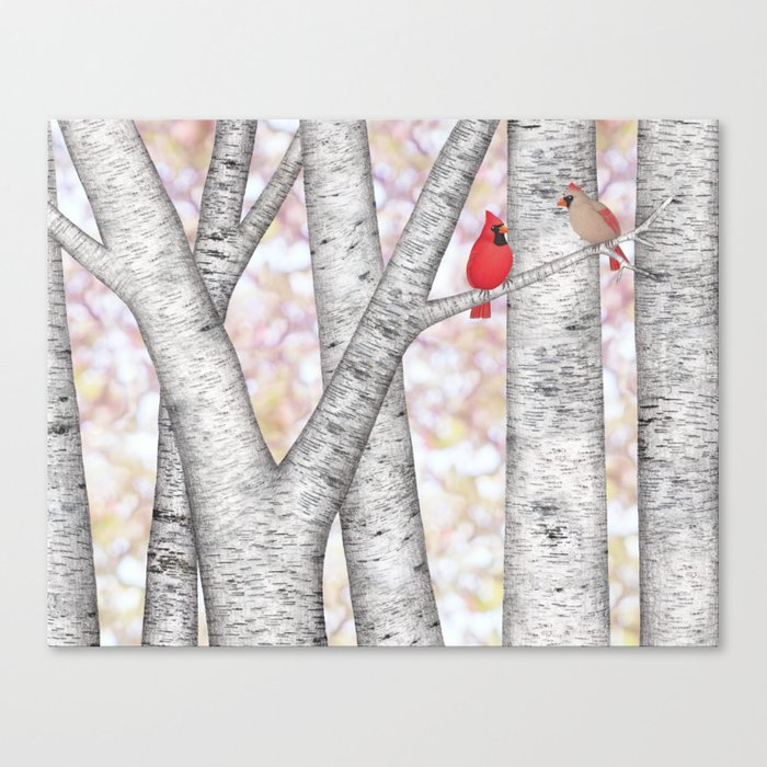 cardinals and birch trees Canvas Print