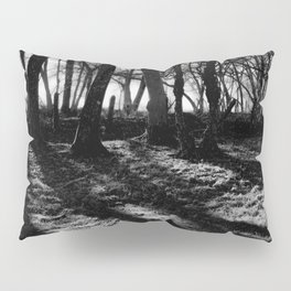 If You Go Down to the Woods Today... Pillow Sham