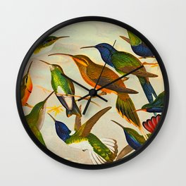 Translate Album de aves amazonicas - Emil August Göldi - 1900 Colorful Hummingbirds Wall Clock