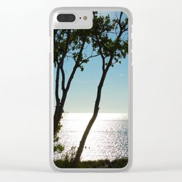 Silver Lake view Clear iPhone Case