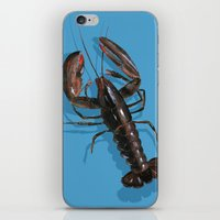 lobster iPhone & iPod Skins featuring Lobster by Trinity Mitchell