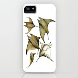 Chilean devil manta ray (Mobula tarapacana) iPhone Case