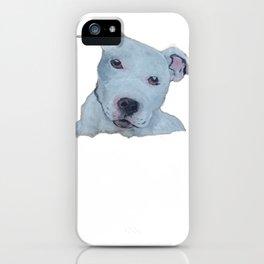 Pit Bull Terrier Puppy Portrait  iPhone Case