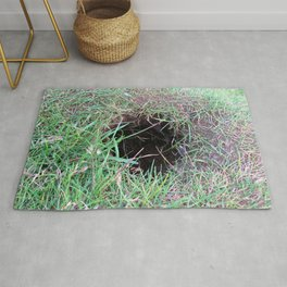 Watercolor Nest, Hole 04, Heimaey, Iceland Rug