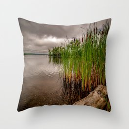Driftwood And Cattails Throw Pillow